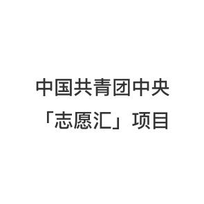 中国共青团中央「志愿汇」项目